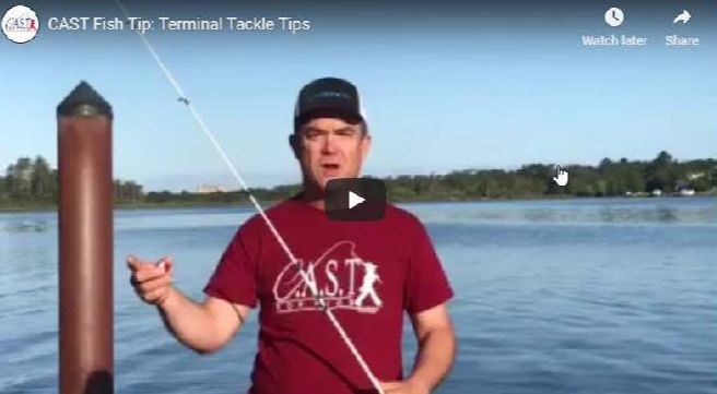 C.A.S.T. Fish Tip #4: Terminal Tackle Tips